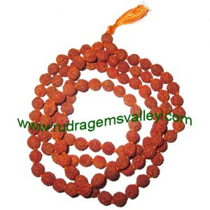 Rudraksha 5 mukhi (five face) 11mm beads string (mala of 108+1 beads), Indonesian pure original rudraksha, available in natural color as well as dyed color with or without knots, pack of 1 string.