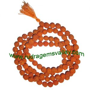 Rudraksha 5 mukhi (five face) 12mm beads string (mala of 108+1 beads), Indonesian pure original rudraksha, available in natural color as well as dyed color with or without knots, pack of 1 string.
