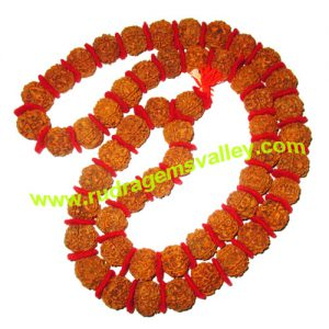Rudraksha 5 mukhi (five face) 20mm beads string (mala of 54+1 beads), Nepali pure original rudraksha with cussion and knotted, pack of 1 string.