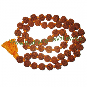 Rudraksha 5 Mukhi Five Face 16mm 18mm Beads String Mala Of 108 1 Beads Nepali Natural Pure Original Rudraksha Without Knots As Per Picture Pack Of 1 String Rudraksha Online Store Rudragemsvalley Com 250 x 250 jpeg 10 кб. rudraksha 5 mukhi five face 16mm 18mm