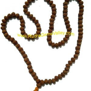 Rudraksha 10 mukhi (ten face) 108+1 beads knotted mala, approx 8mm to 10mm beads, Indonesia pure original rudraksha.
