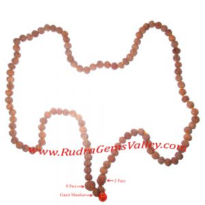 Rudraksha-indrakshi-indrani 108 beads knotted mala for removing evil effects of saturn and rahu, womens health issues, and enhancing wealth and love and affection between couples. Indonesian rudraksha 2 face, 8 face and gauri shankar 1 pcs. each and 7 fac