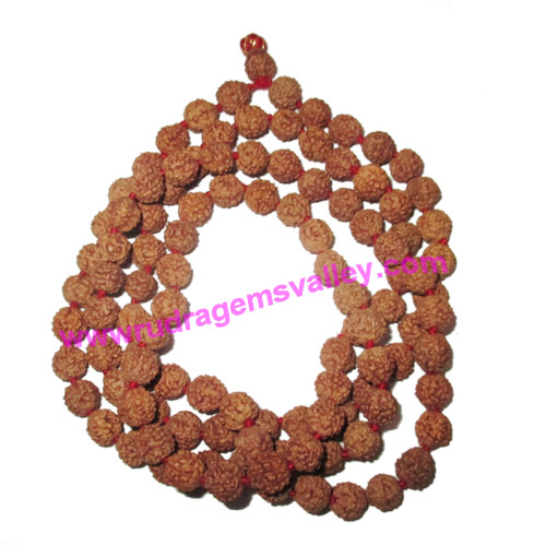 Rudraksha 5 mukhi (five face) heavy weight 10mm beads mala of 108+1 beads, Indonesian pure original rudraksha in natural color and knotted each beads, pack of 1 string.