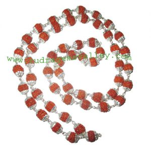 Rudraksha 5 mukhi (five face) 7mm to 8mm beads mala of 54+1 beads with silver plated metal caps, no tassel, Indonesian pure original rudraksha, also available in natural color as well as dyed color with or without knots, pack of 1 mala.