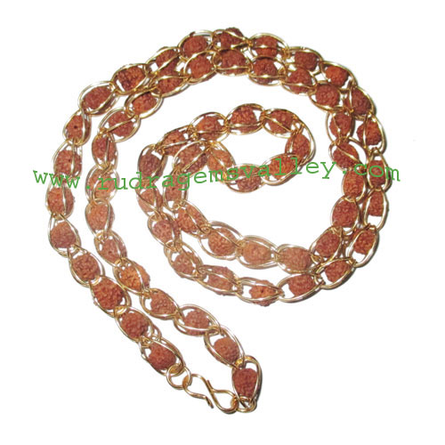 Rudraksha 5 mukhi (five face) 7mm to 8mm beads mala of 65 beads in gold plated metal wire, no tassel, Indonesian pure original rudraksha, also available in natural color as well as dyed color with or without knots, pack of 1 mala.