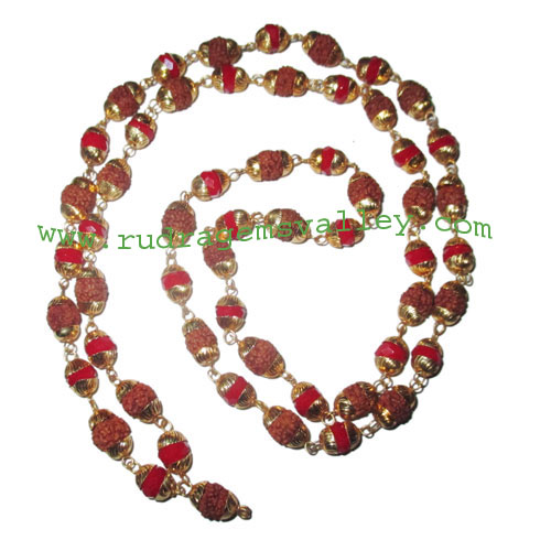 Rudraksha 5 mukhi (five face) 7mm to 8mm beads mala of 54+1 beads (28 rudraksha and 27 red glass beads) knotted in gold plated metal wire with caps, no tassel, Indonesian pure original rudraksha, also available in natural color as well as dyed color with