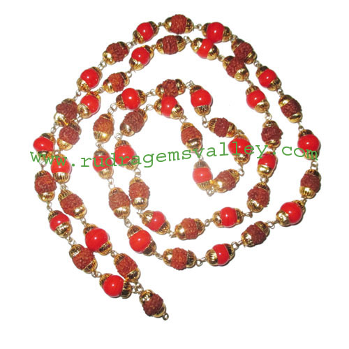 Rudraksha 5 mukhi (five face) 5.5mm to 6mm beads mala of 54+1 beads (28 rudraksha and 27 red diamond glass beads) knotted in gold plated metal wire with caps, no tassel, Indonesian pure original rudraksha, also available in natural color as well as dyed c