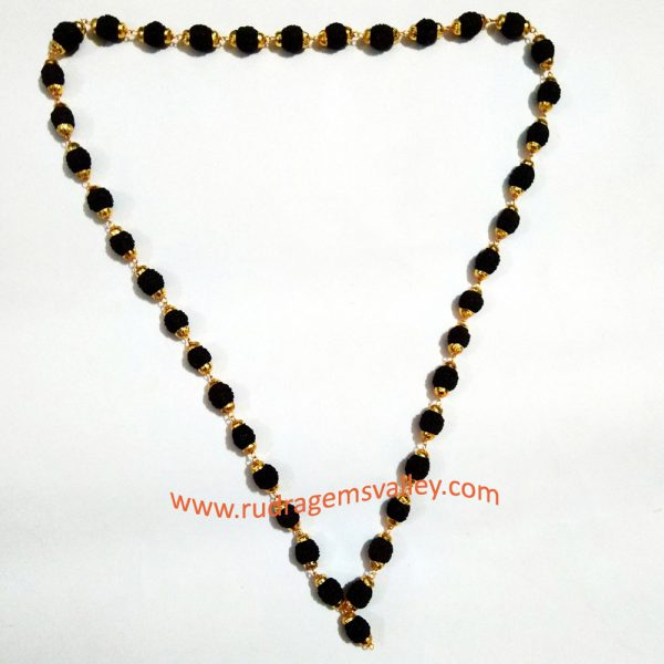 Black rudraksha 5 face beads mala with gold plated metal caps, beads size 9mm, total 40 beads in it, length (circumference) 27 inches.