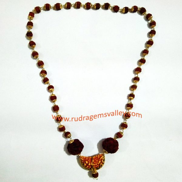 Rudraksha 5 face beads mala with gold plated metal caps, natural 5 face 7mm Indonesian 41 beads, natural 5 face 18mm Nepali 2 beads and artificial 1 face rudraksha in middle.