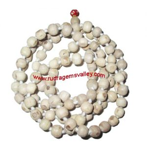 Tulsi beads mala, holy basil, auspicious wood beads-seeds string (mala of 108+1 beads), size: 9mm, pack of 1 string.