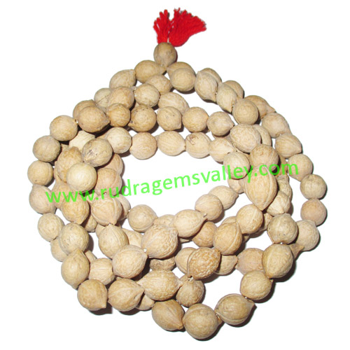 Putra Jeeva Rosary Wood Beads-White Seeds String (mala of 108+1 beads), made of 9mm purtrajiva beads, pack of 1 string.