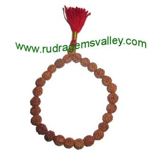 Rudraksha five face (5 mukhi) 8.5mm 27 beads bracelets made in elastic (free size, stretchable) . Five faced (5 mukhi) rudraksha beads are useful for removing lust, greed, attachment, jealousy, unwanted ego etc.; it prevents and cures blood pressure, hear